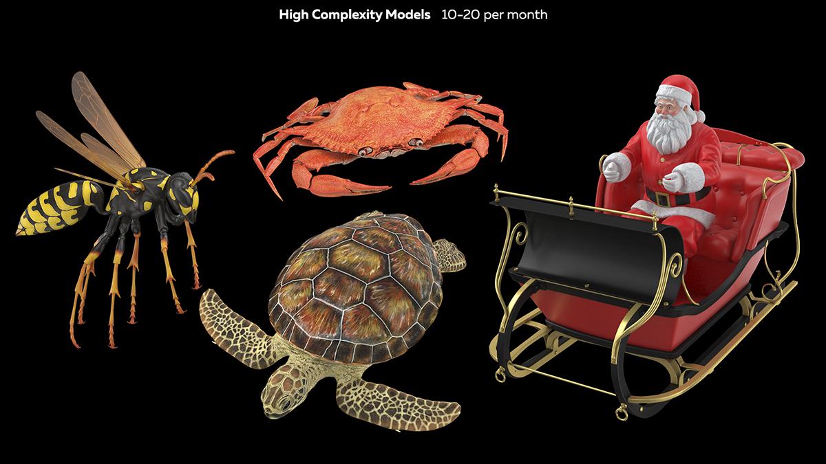 High Complexity 3D Models