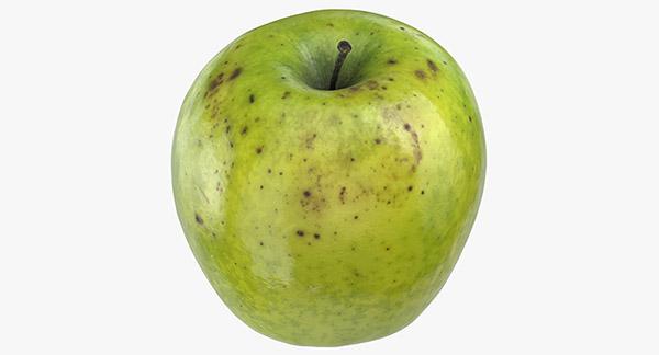 Granny Smith Apple 3D Model