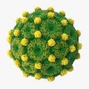 Hepatitis B - thumb 1