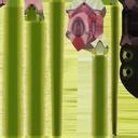 Green Snake 02 - thumb 20
