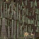 Old Dead Tree 01 - thumb 20