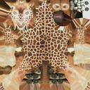 Giraffe - thumb 11