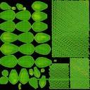 Succulent 12 - thumb 22