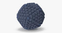 Adenovirus - thumb 13