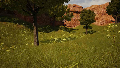 Game Demo Grass View