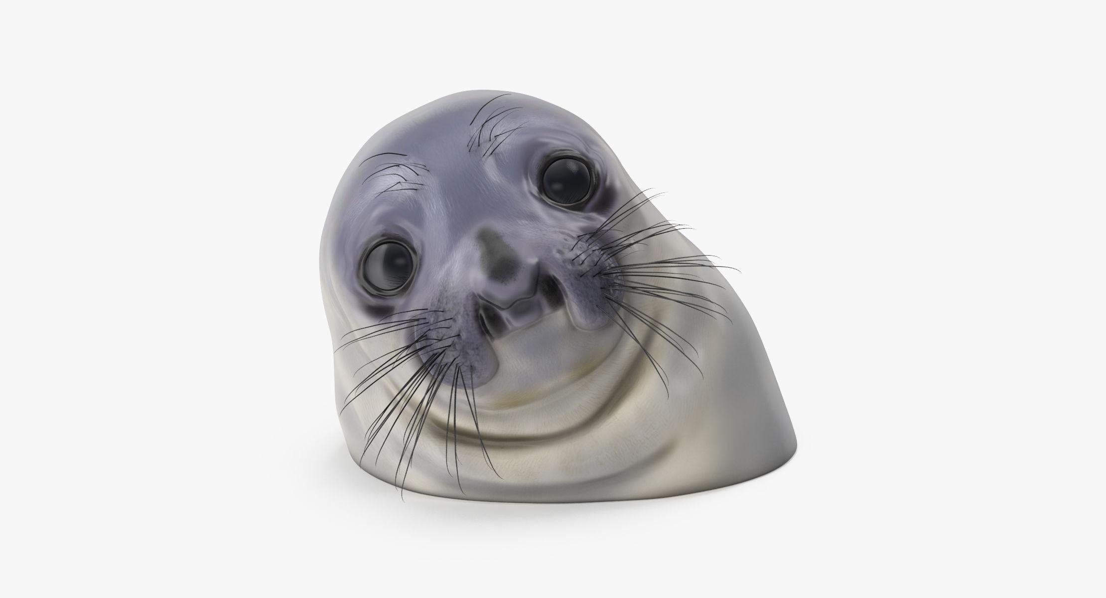 Awkward Moment Seal - reel 1