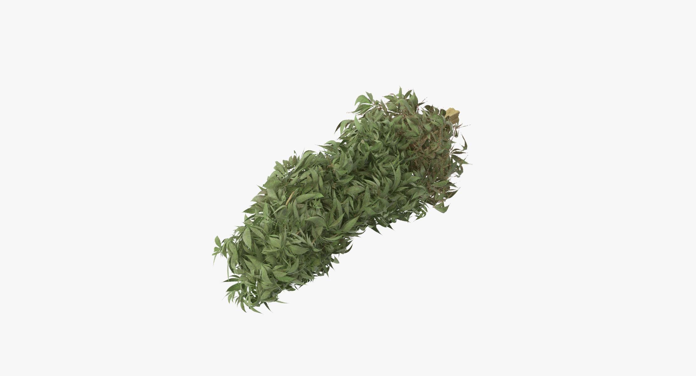 Marijuana Bud 01 02 - reel 1