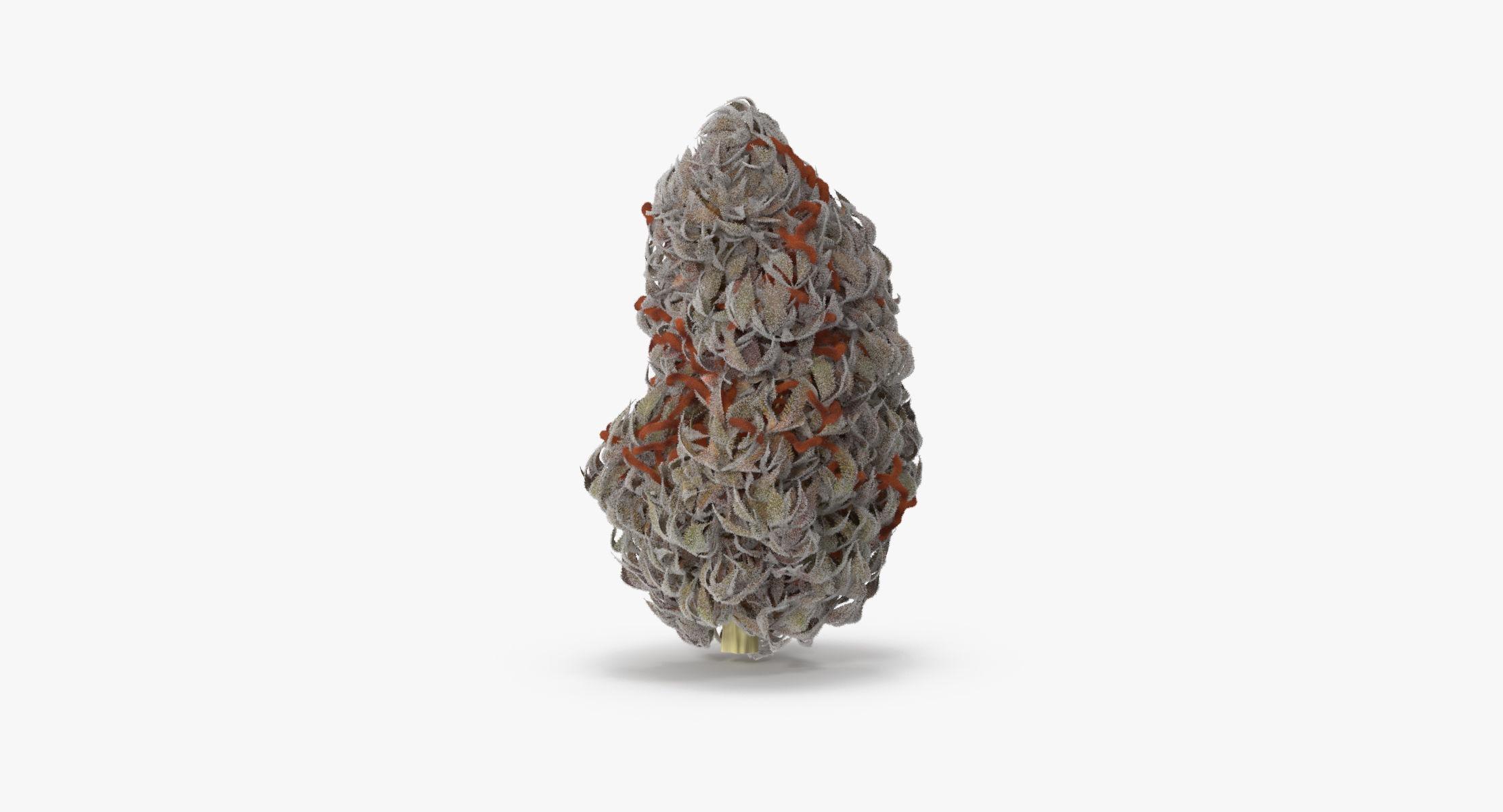 Marijuana Bud 02 02 - reel 1
