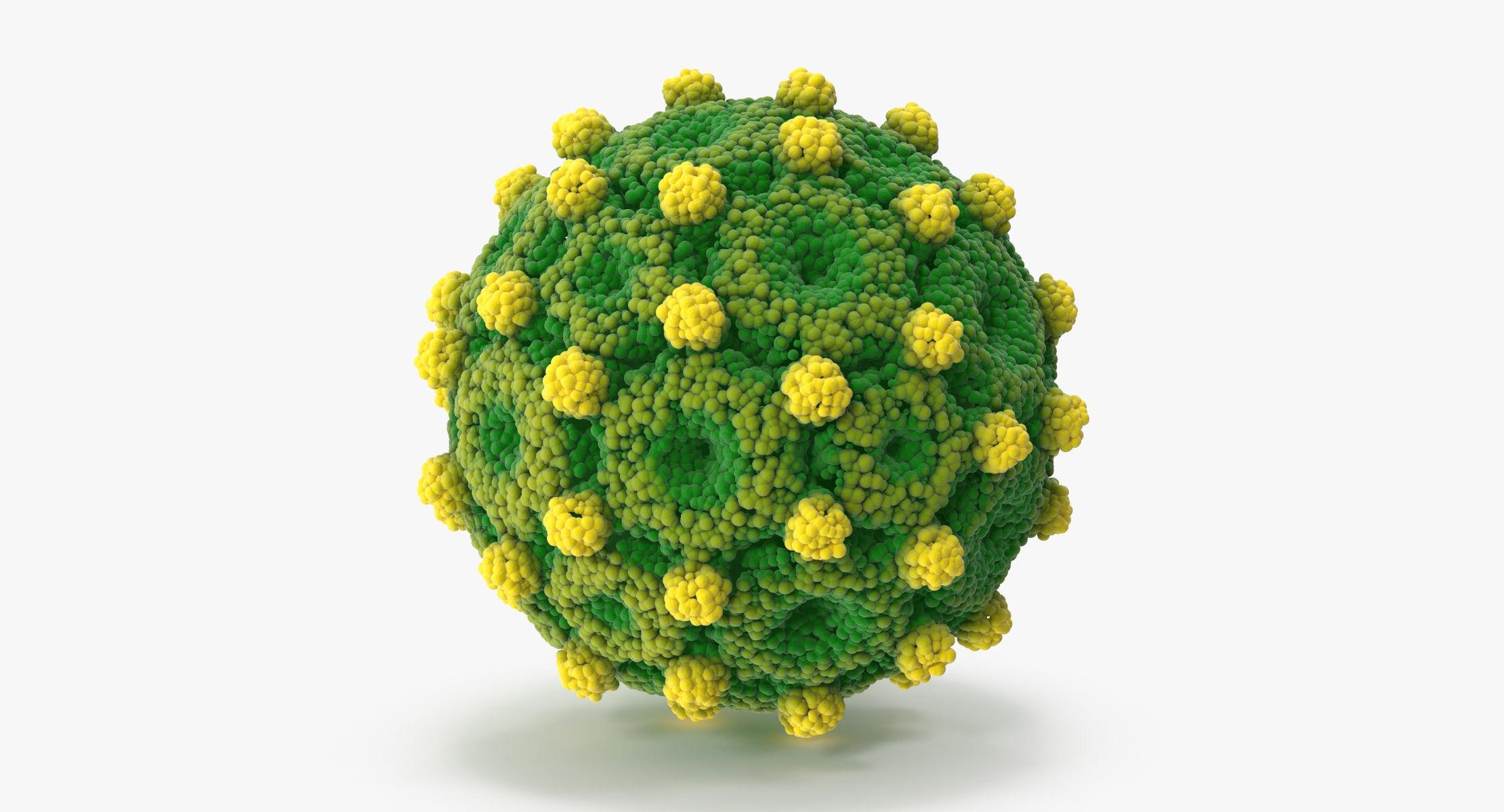 Hepatitis B - reel 1
