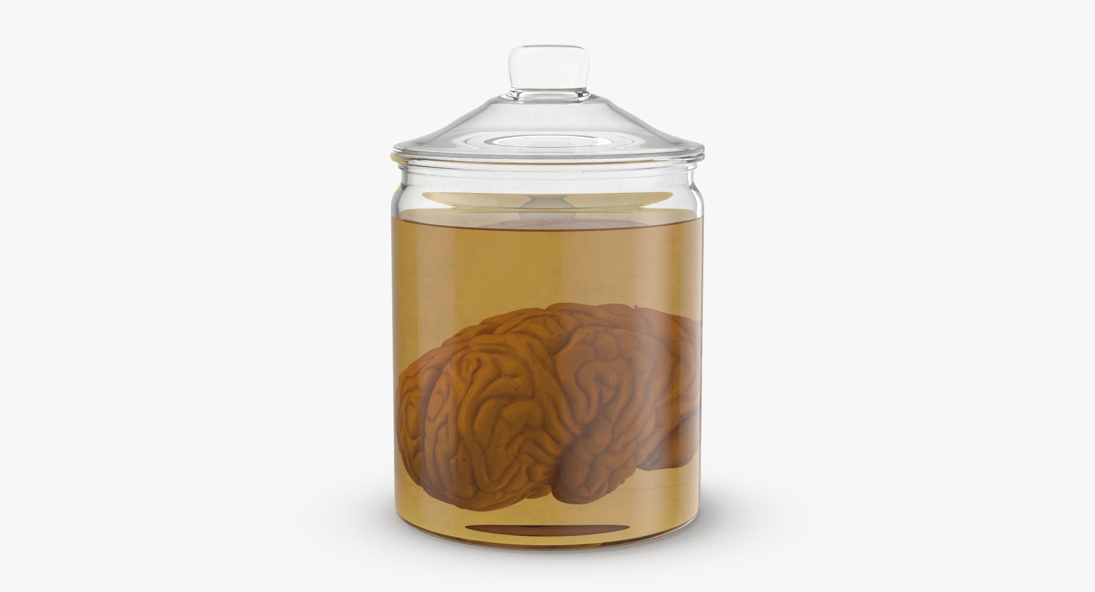 Vintage Organ Jar - Brain - reel 1