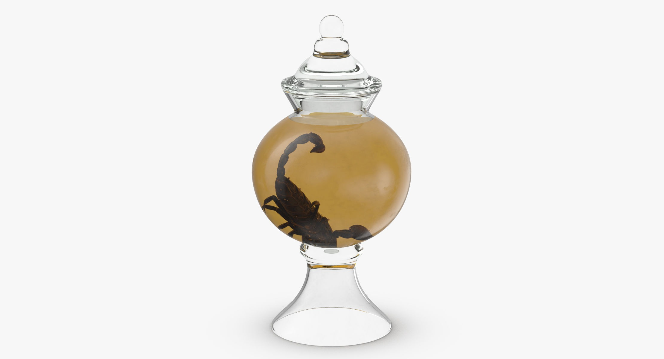 Vintage Specimen Jar - Scorpion - reel 1