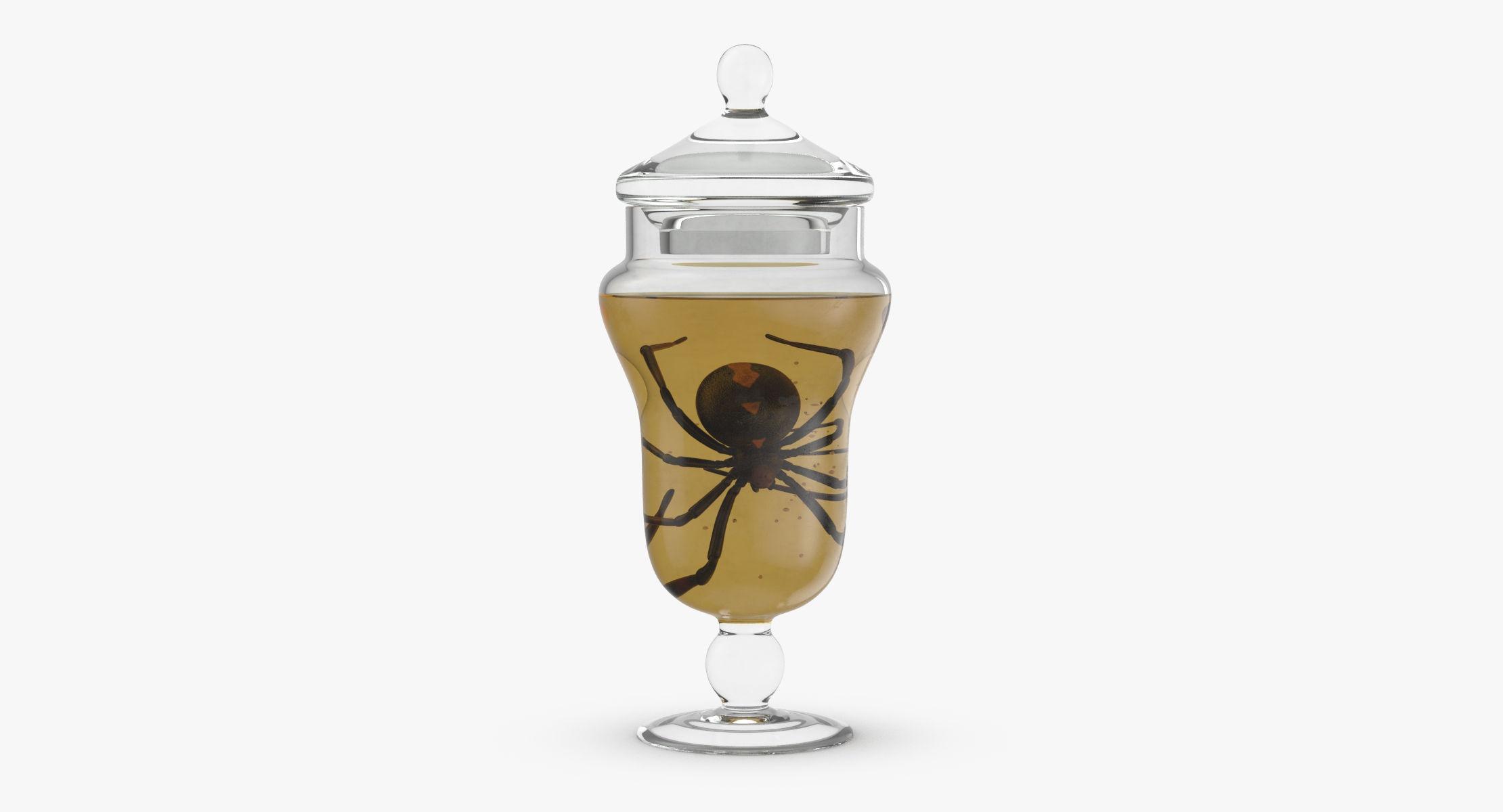 Vintage Specimen Jar - Spider - reel 1