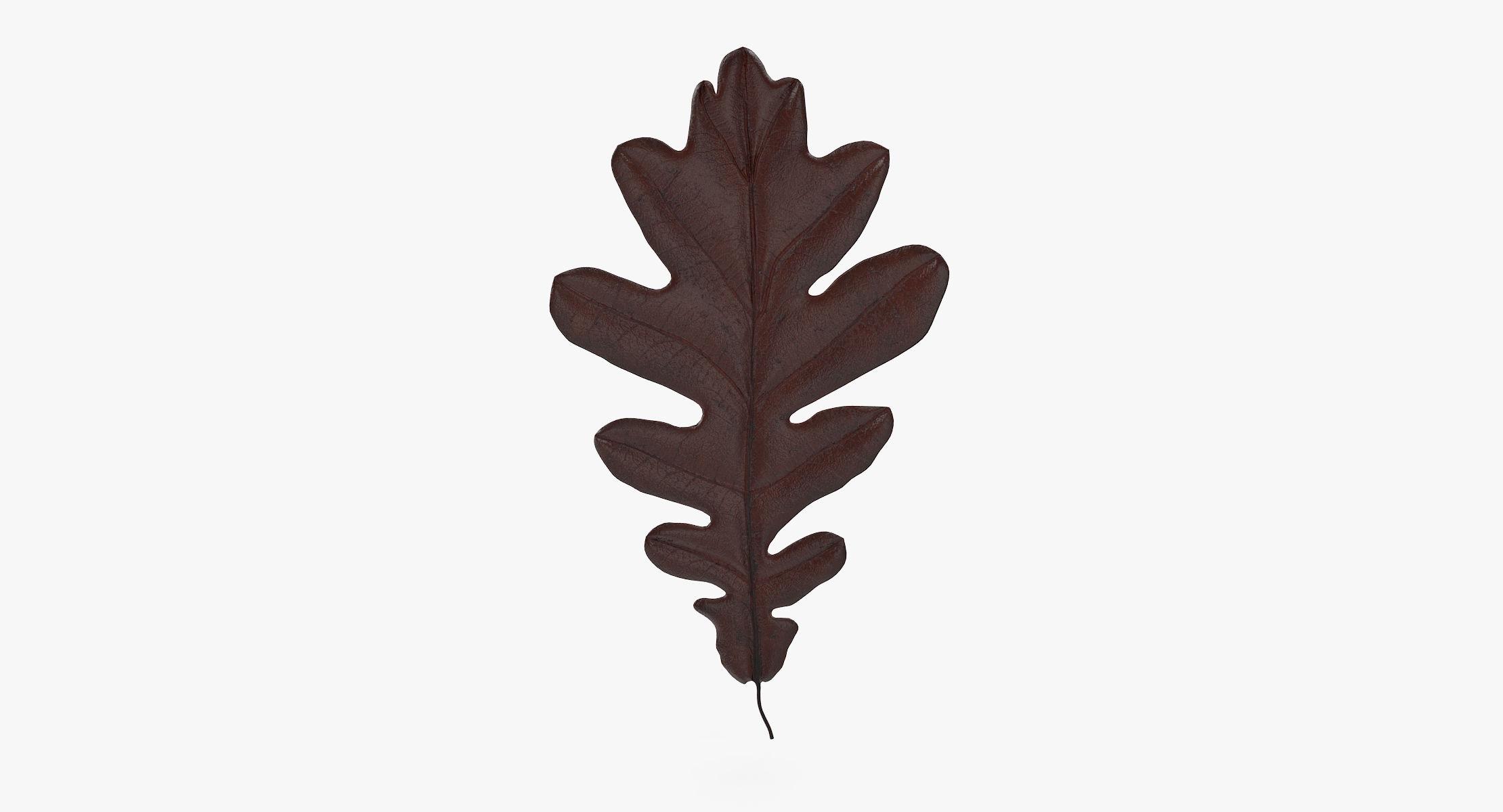 Oak Leaf 05 Brown - reel 1