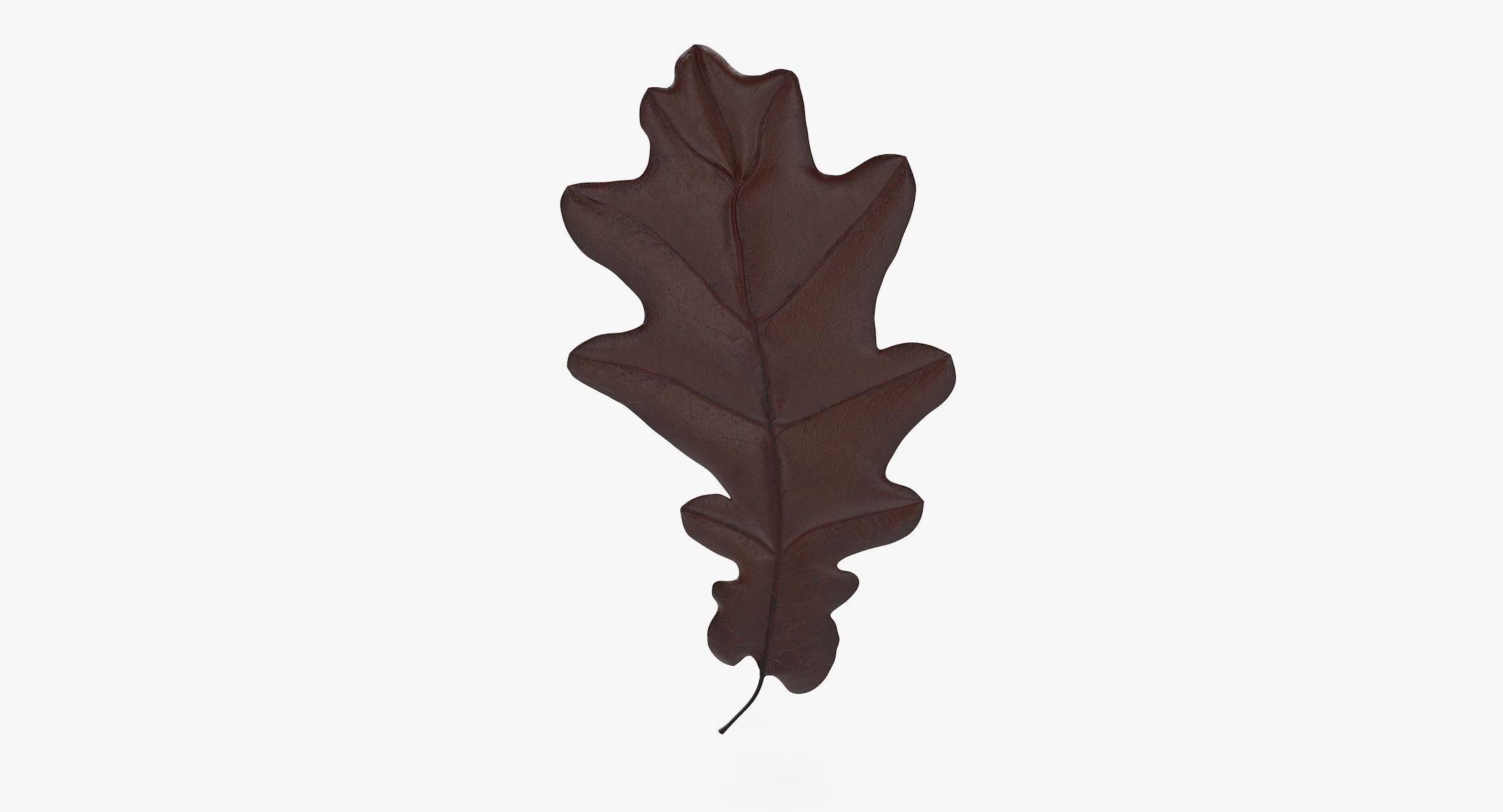 Oak Leaf 04 Brown - reel 1