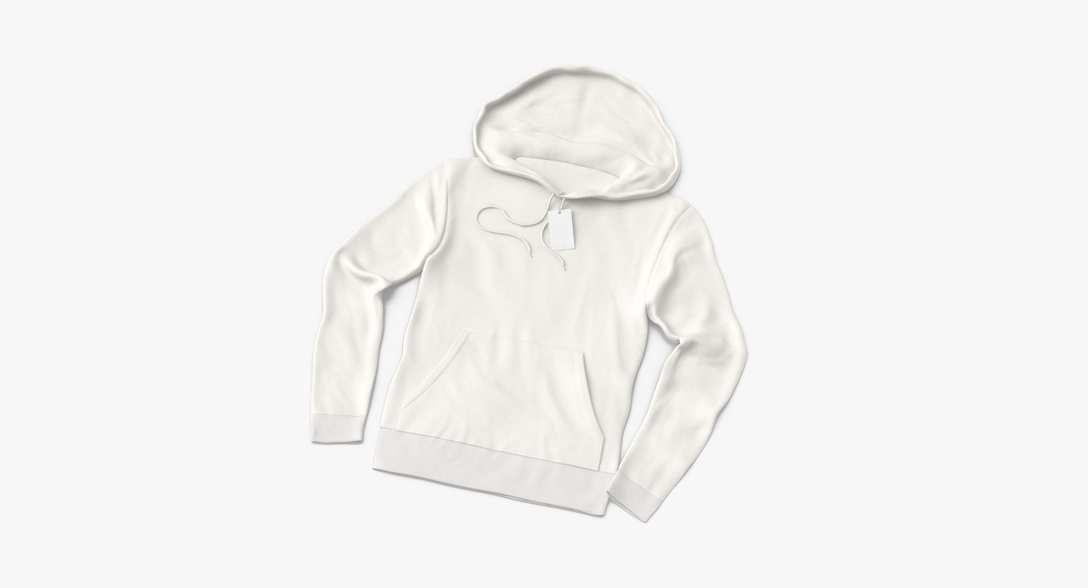 Male Standard Hoodie Laid out Loosely With Tag - reel 1