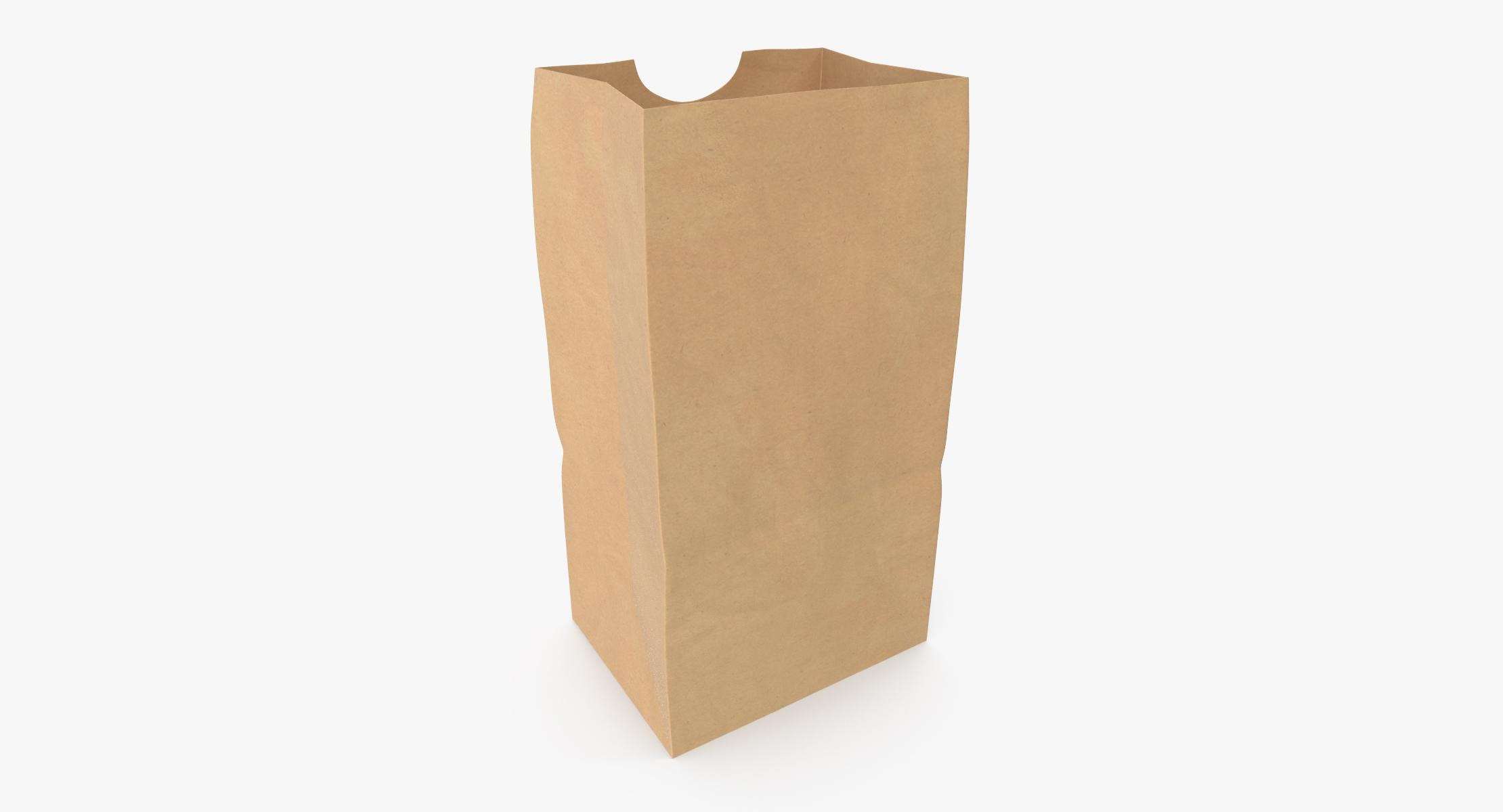 Grocery Bag No Handle Mockup Small Open model - reel 1