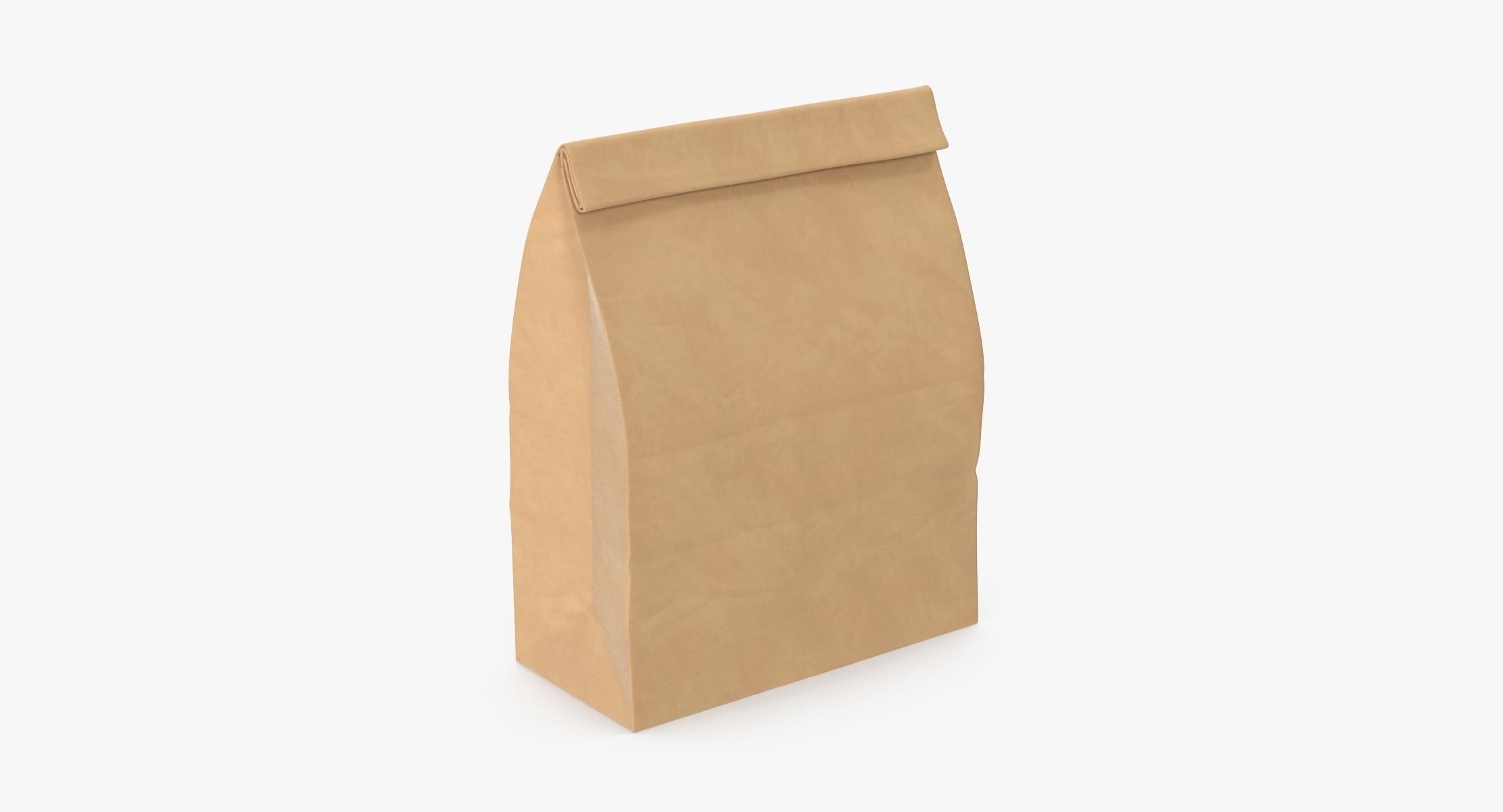 Grocery Bag No Handle Mockup Large Closed - reel 1