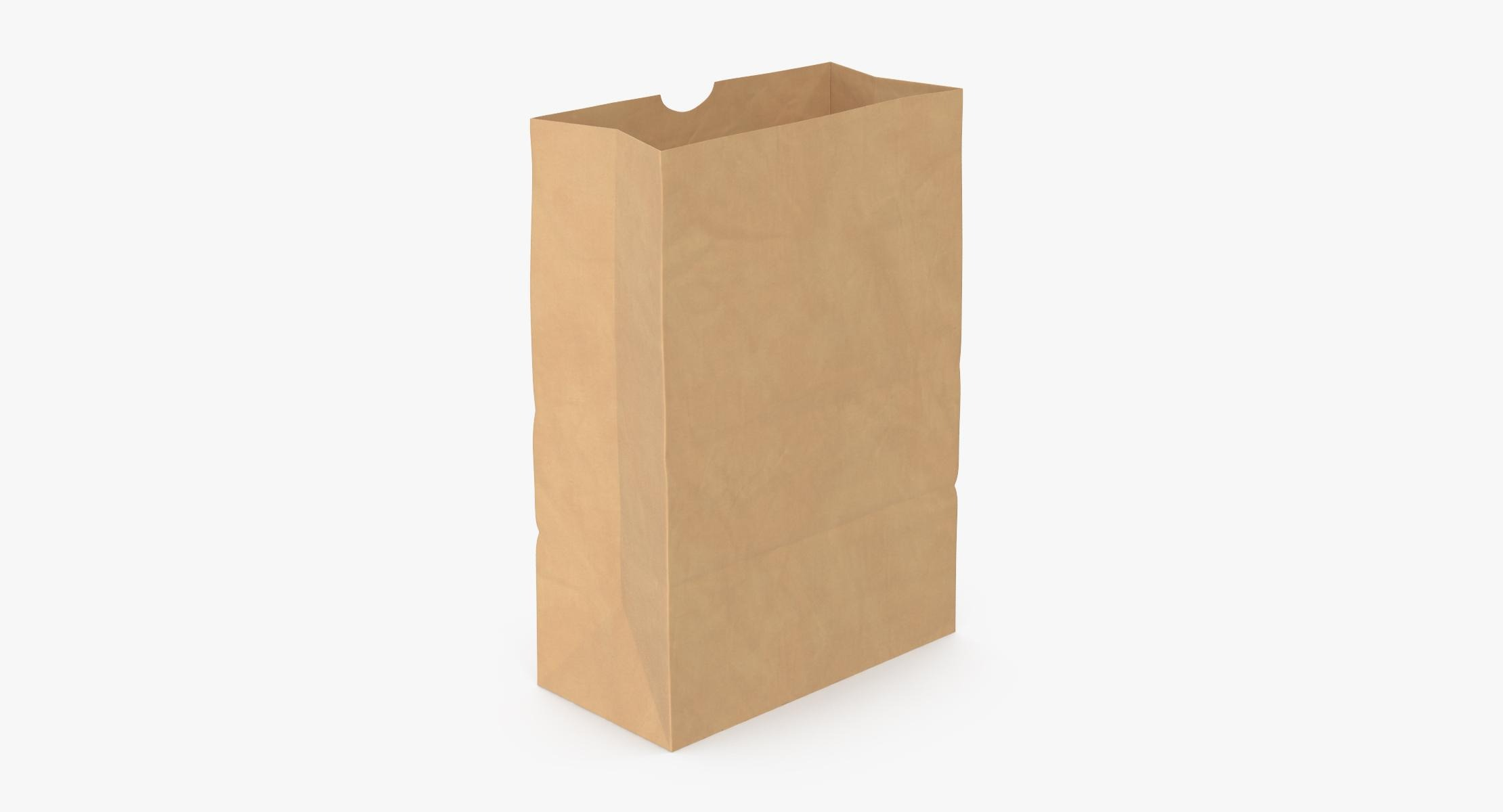 Grocery Bag No Handle Mockup Large Open model - reel 1