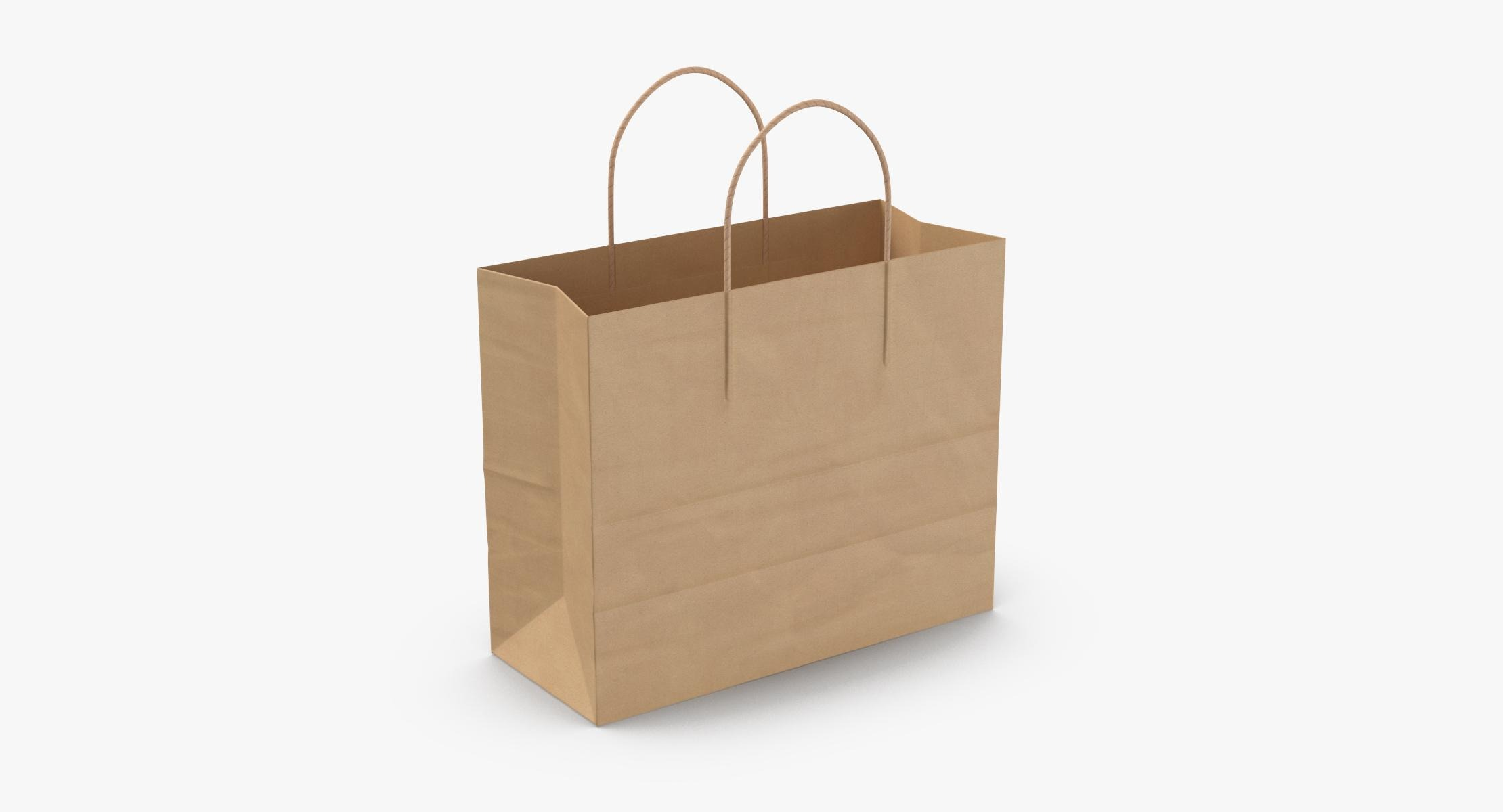 Paper Shopping Bag with Paper Handle Medium - reel 1