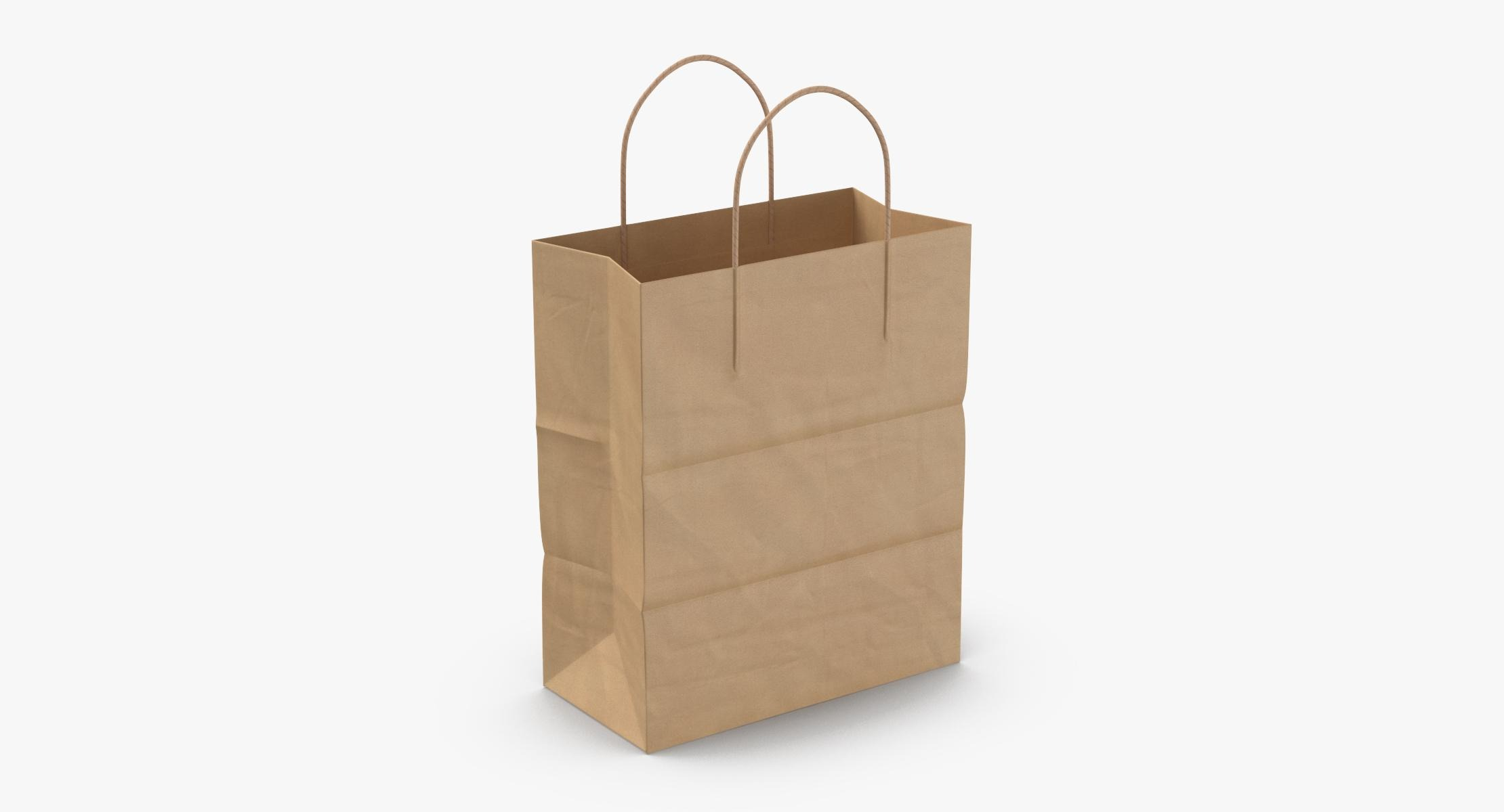 Paper Shopping Bag with Paper Handle Large model - reel 1