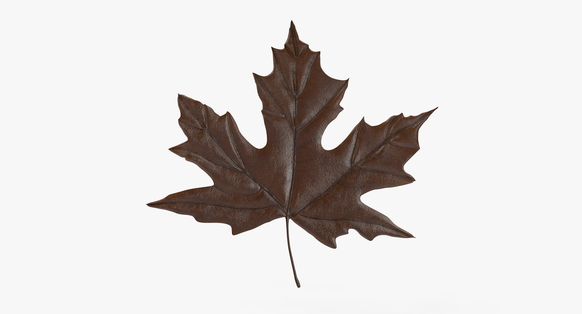Maple Leaf 04 Brown - reel 1