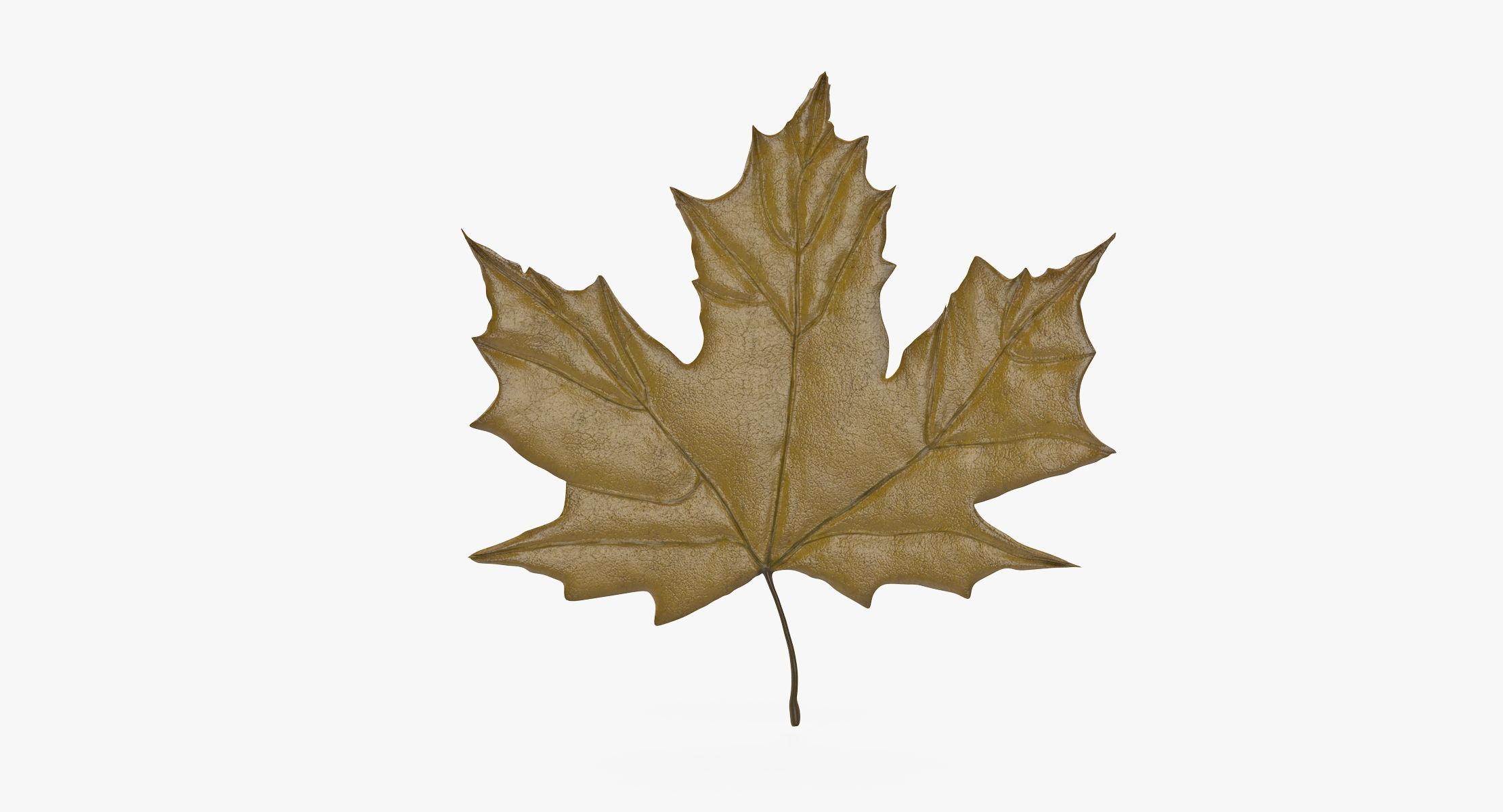 Maple Leaf 03 Yellow - reel 1