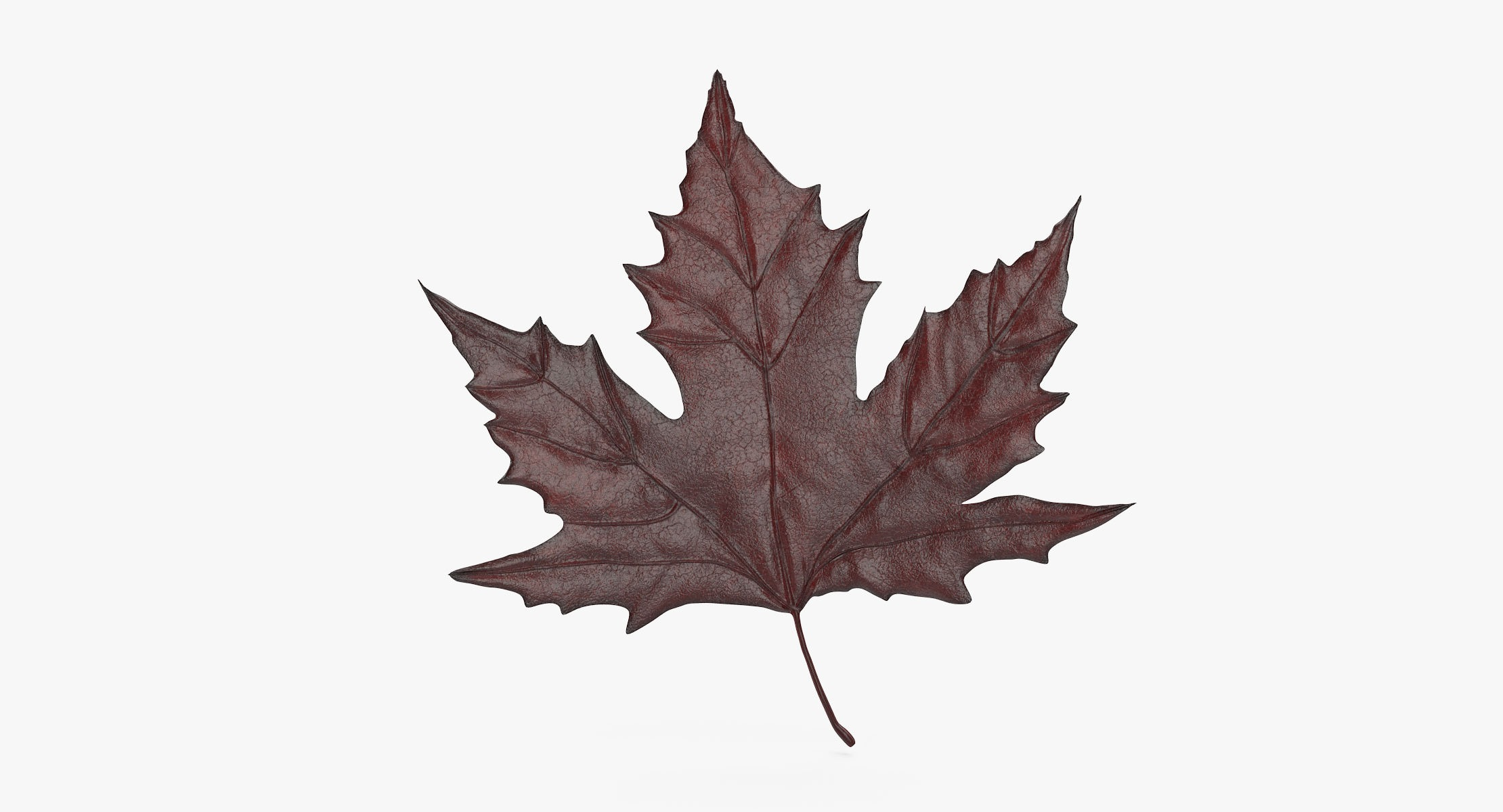 Maple Leaf 02 Red - reel 1