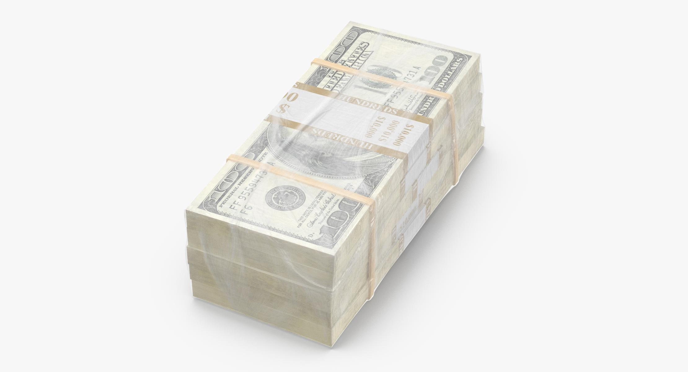 Wrapped Bills of Money - 100 Dollar Stacks 02 - reel 1