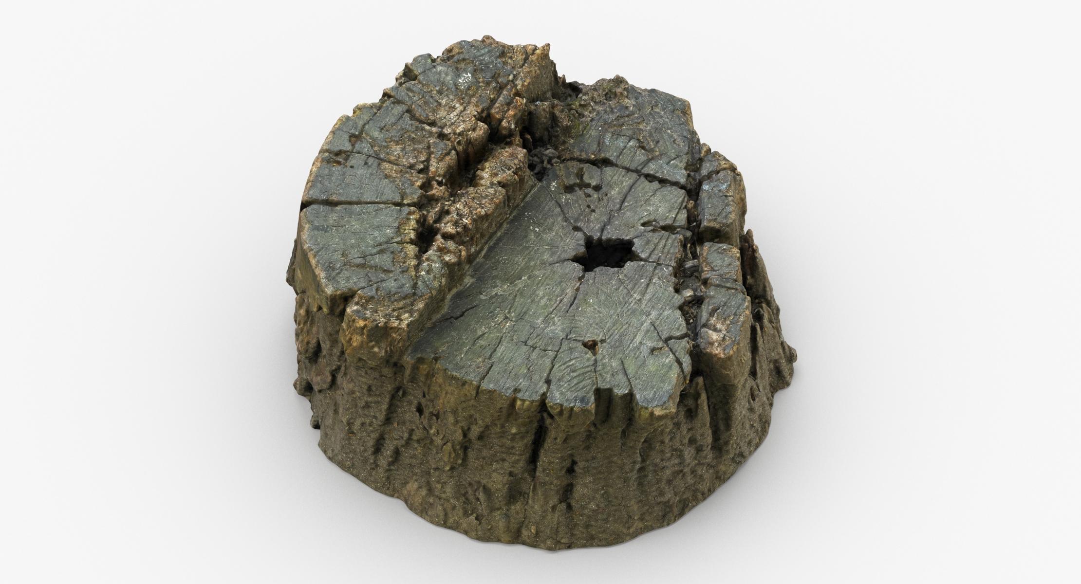 Tree Stump 01 3D - reel 1