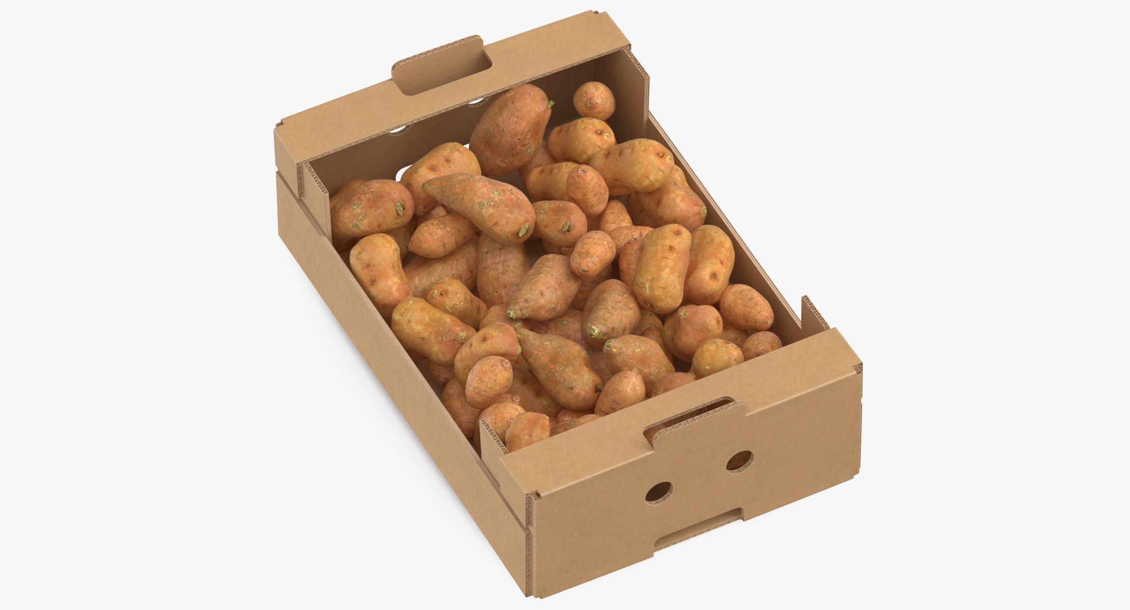 Cardboard Box 02 With Sweet Potatoes Full 3D model - reel 1
