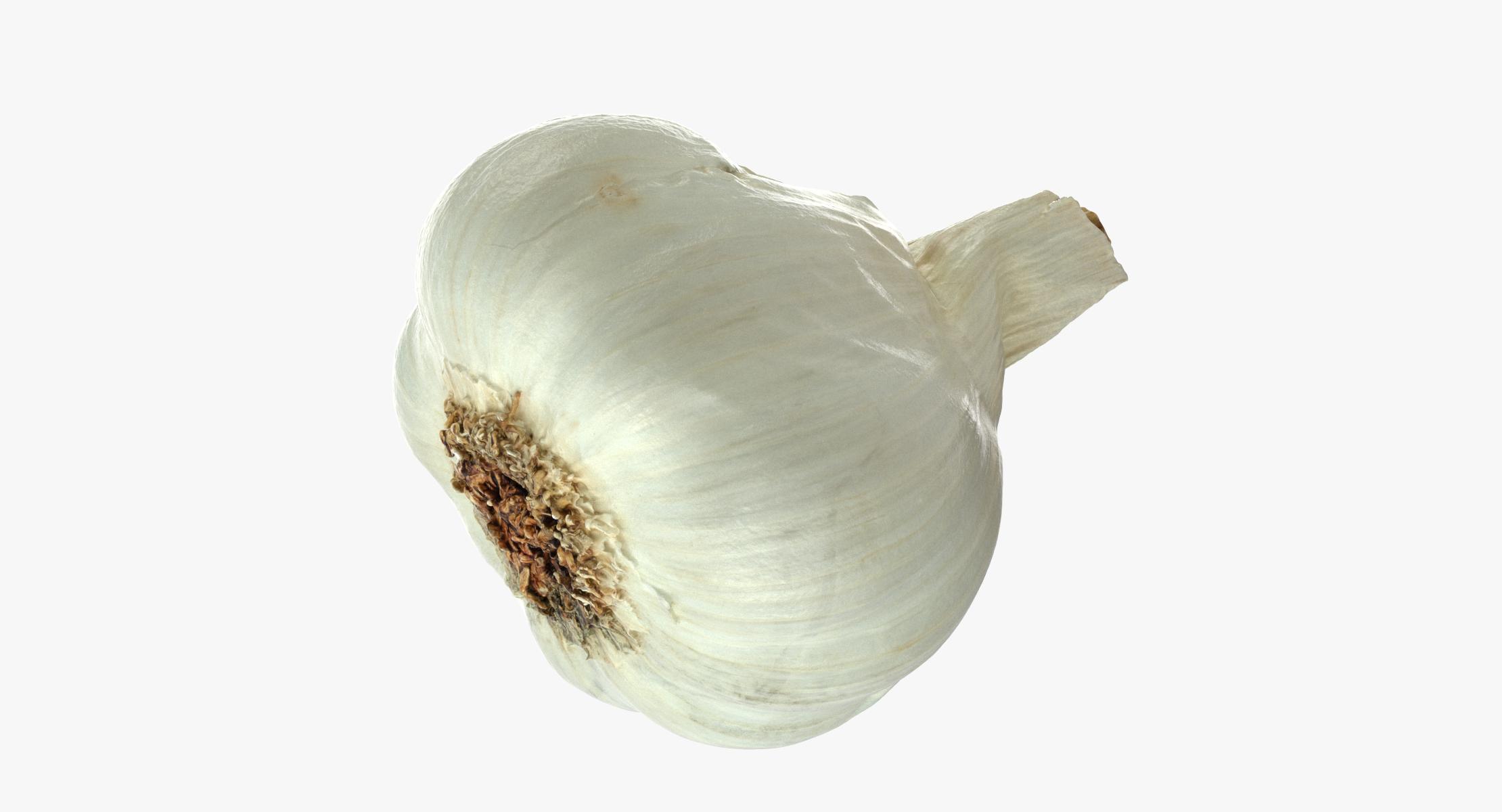 Garlic 01 3D model - reel 1
