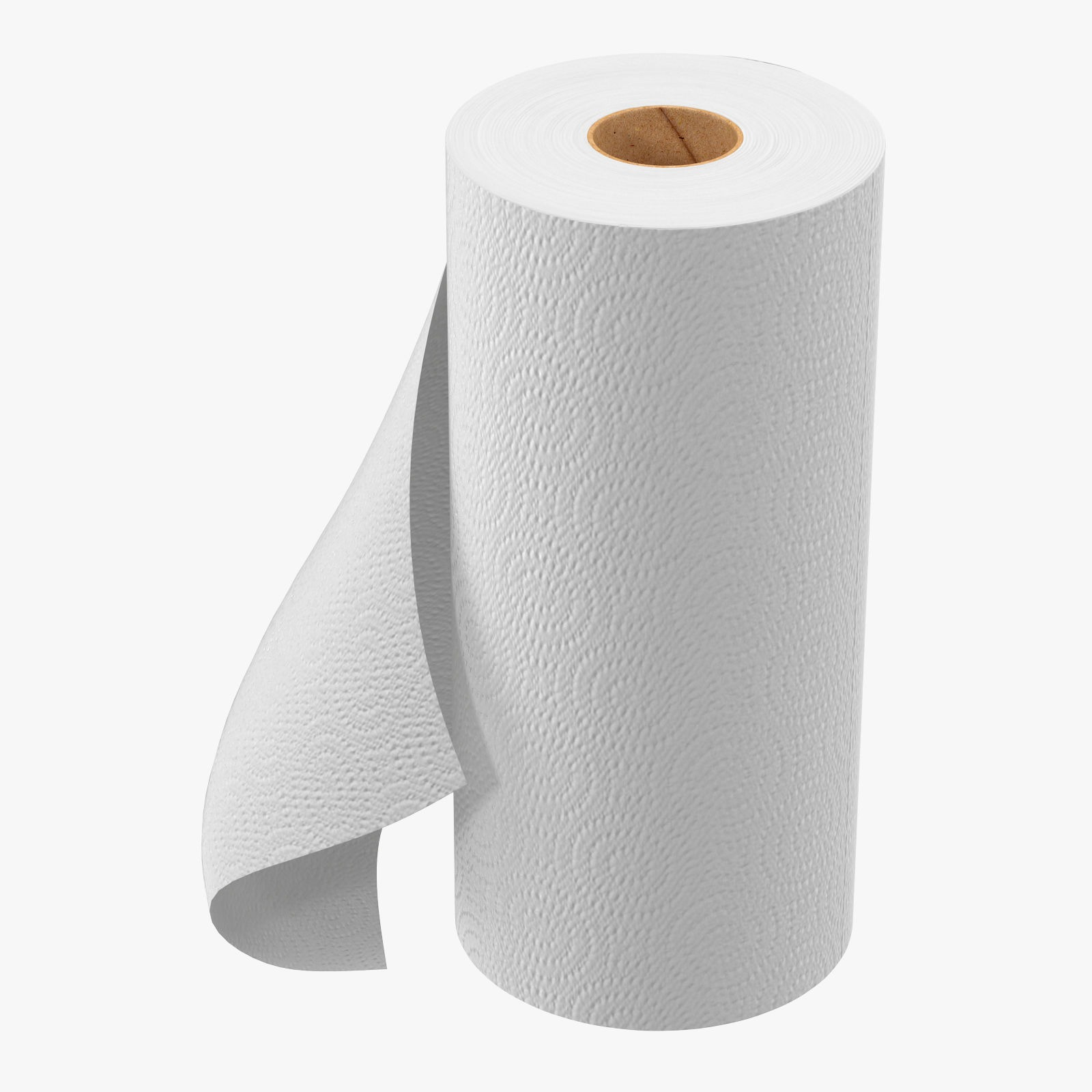 3d model specifications - Paper Towel Roll