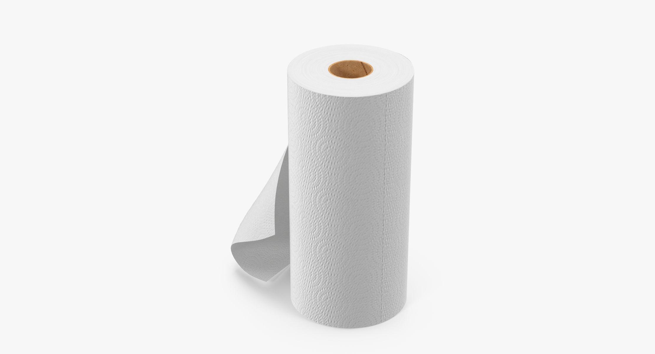 Paper Towel Roll 02 - reel 1