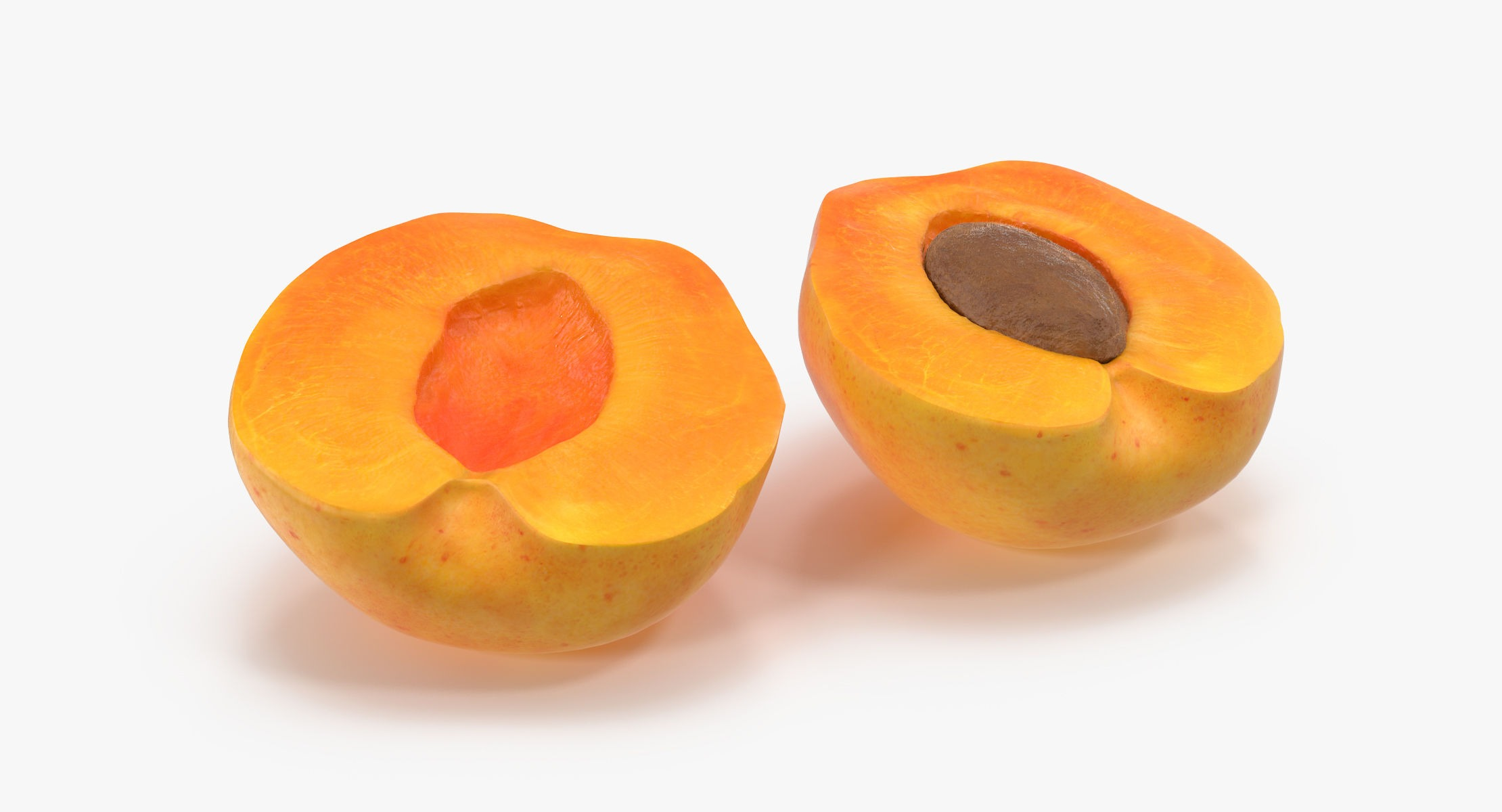 Apricot Cross Section 03 - reel 1