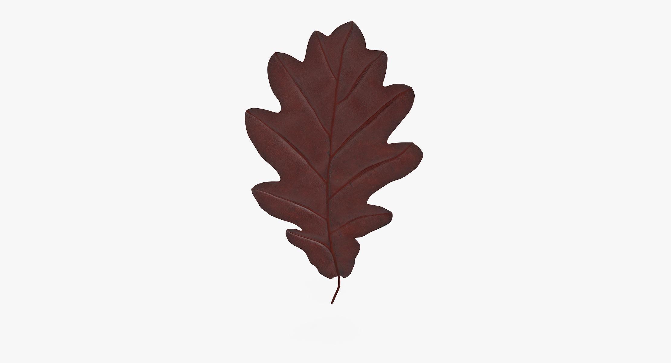 Oak Leaf Orange 01 - reel 1