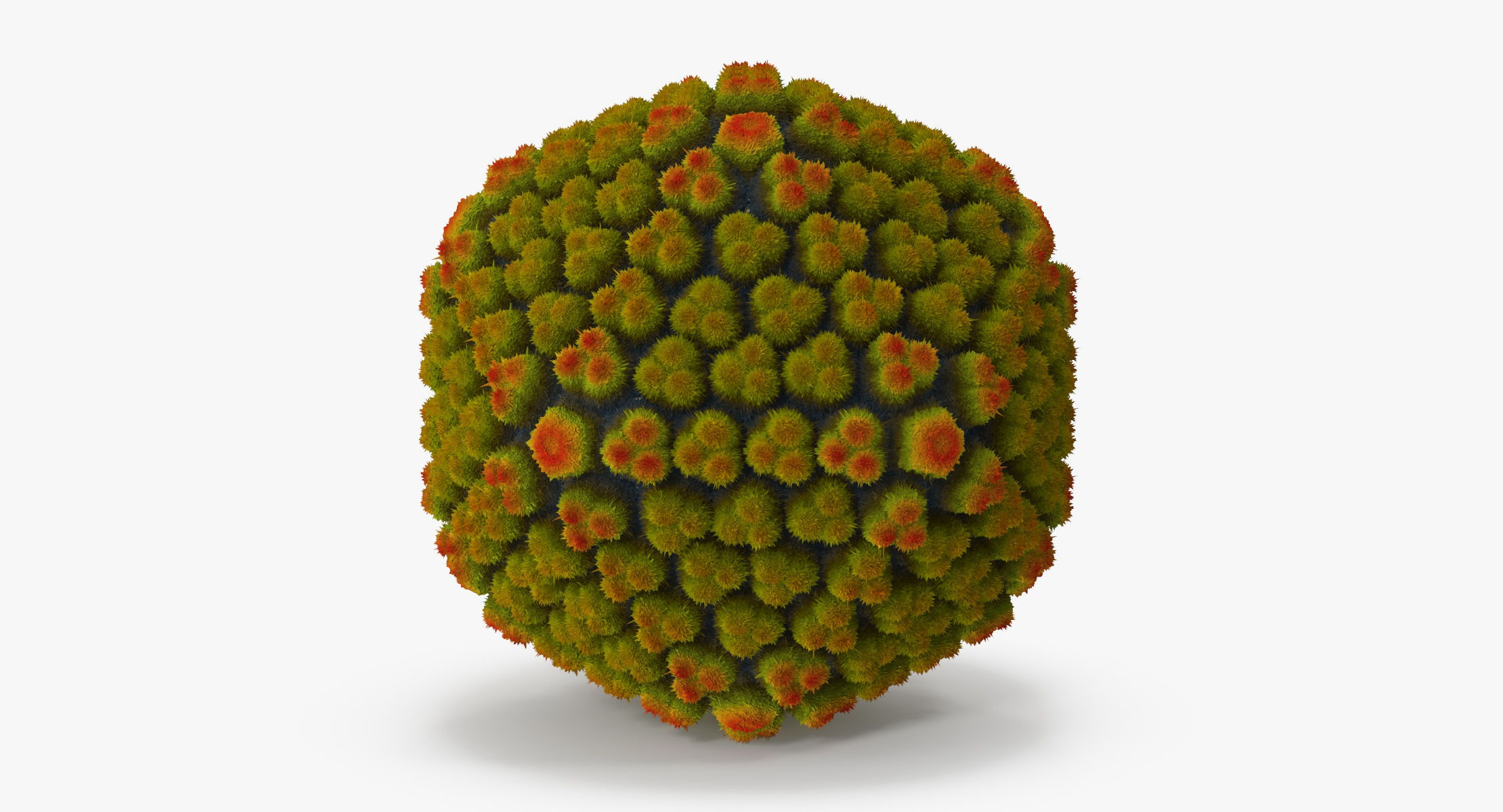 Adenovirus - reel 1