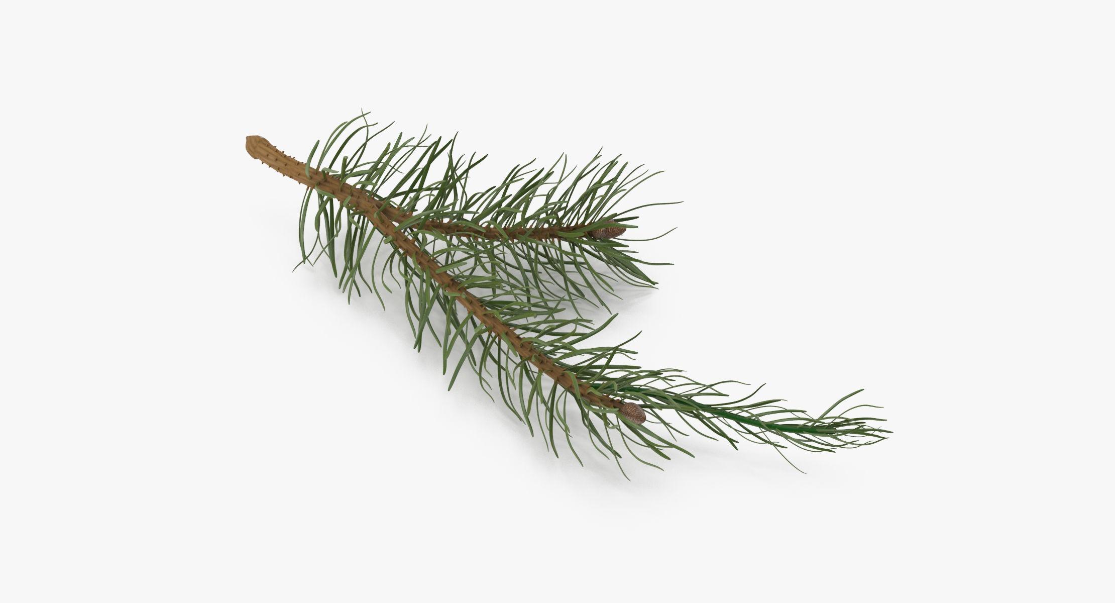 Pine Tree Sprigs 03 - reel 1