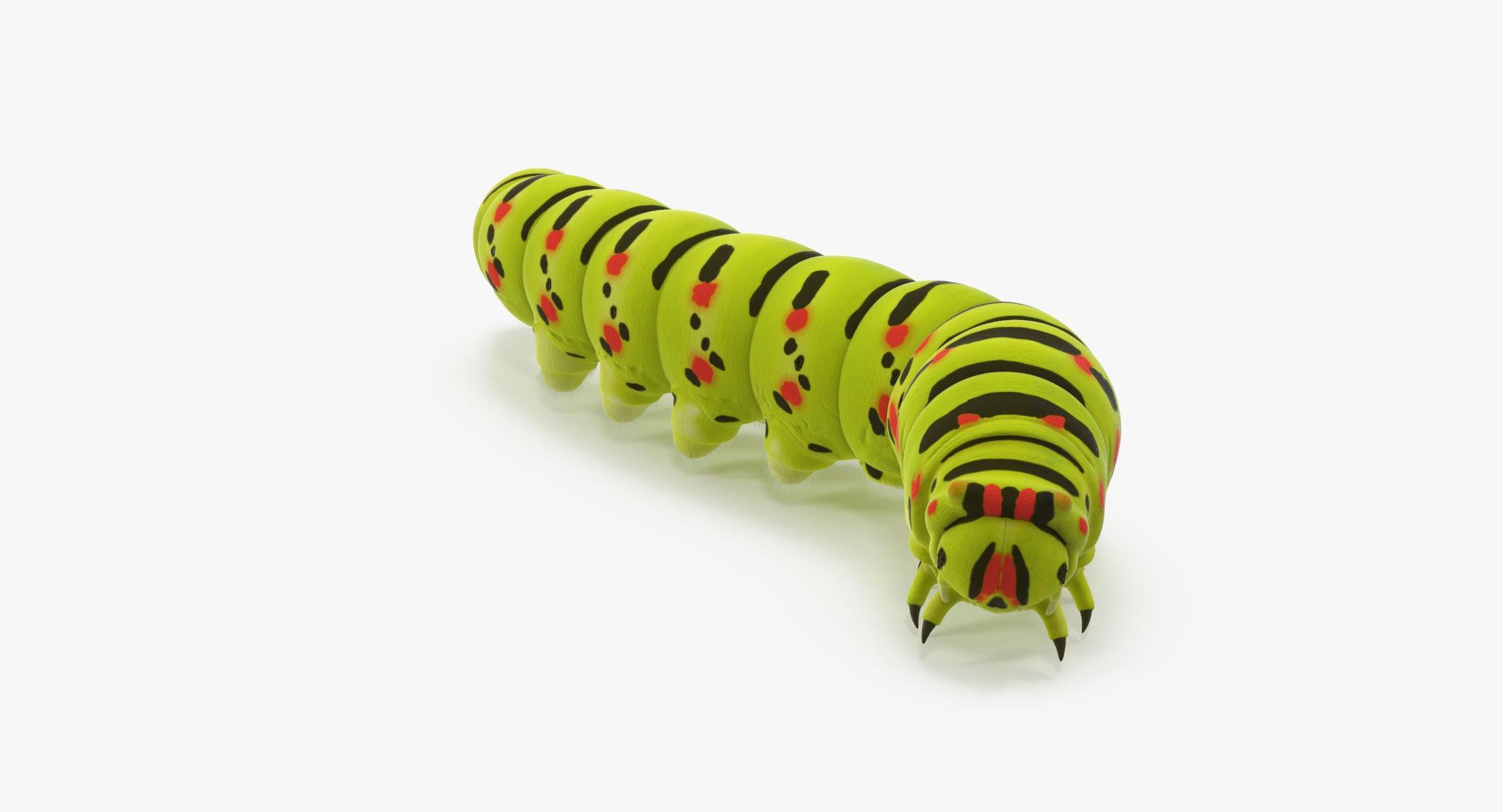 Caterpillar Rigged - reel 1