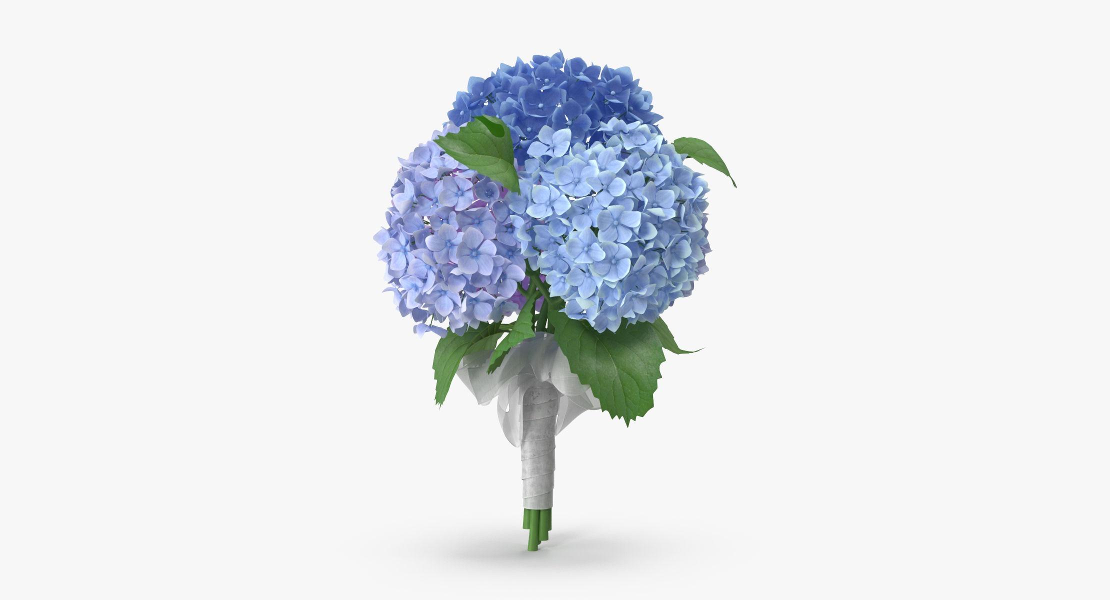 Hydrangeas - Bouquet - reel 1
