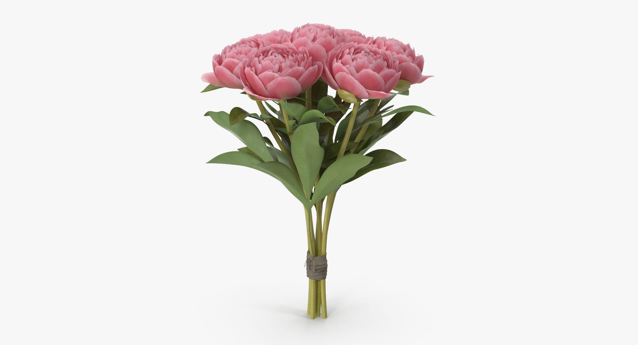 Peony - Bouquet - reel 1