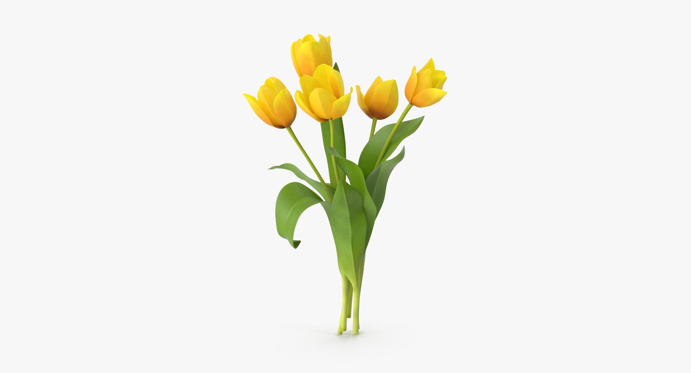 Tulips Yellow - Bouquet - reel 1