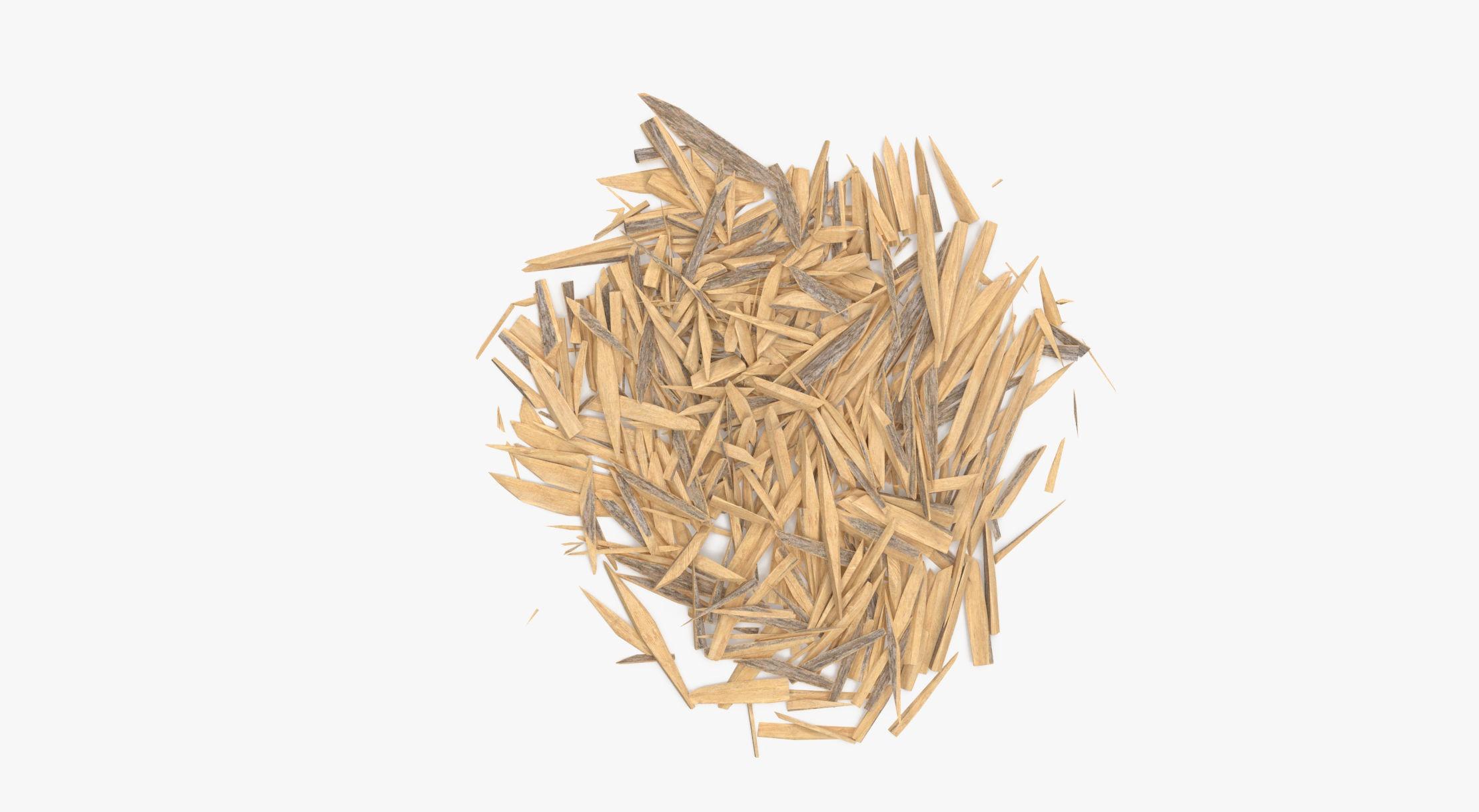 Splintered Wood 04 - reel 1