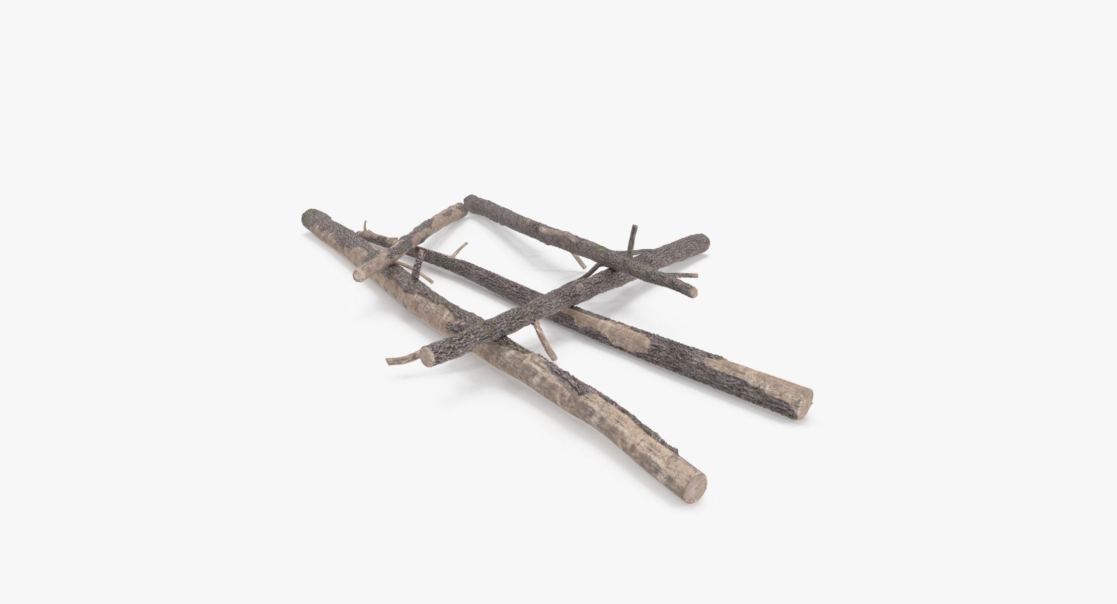 Fallen Log - Pine 01 - reel 1