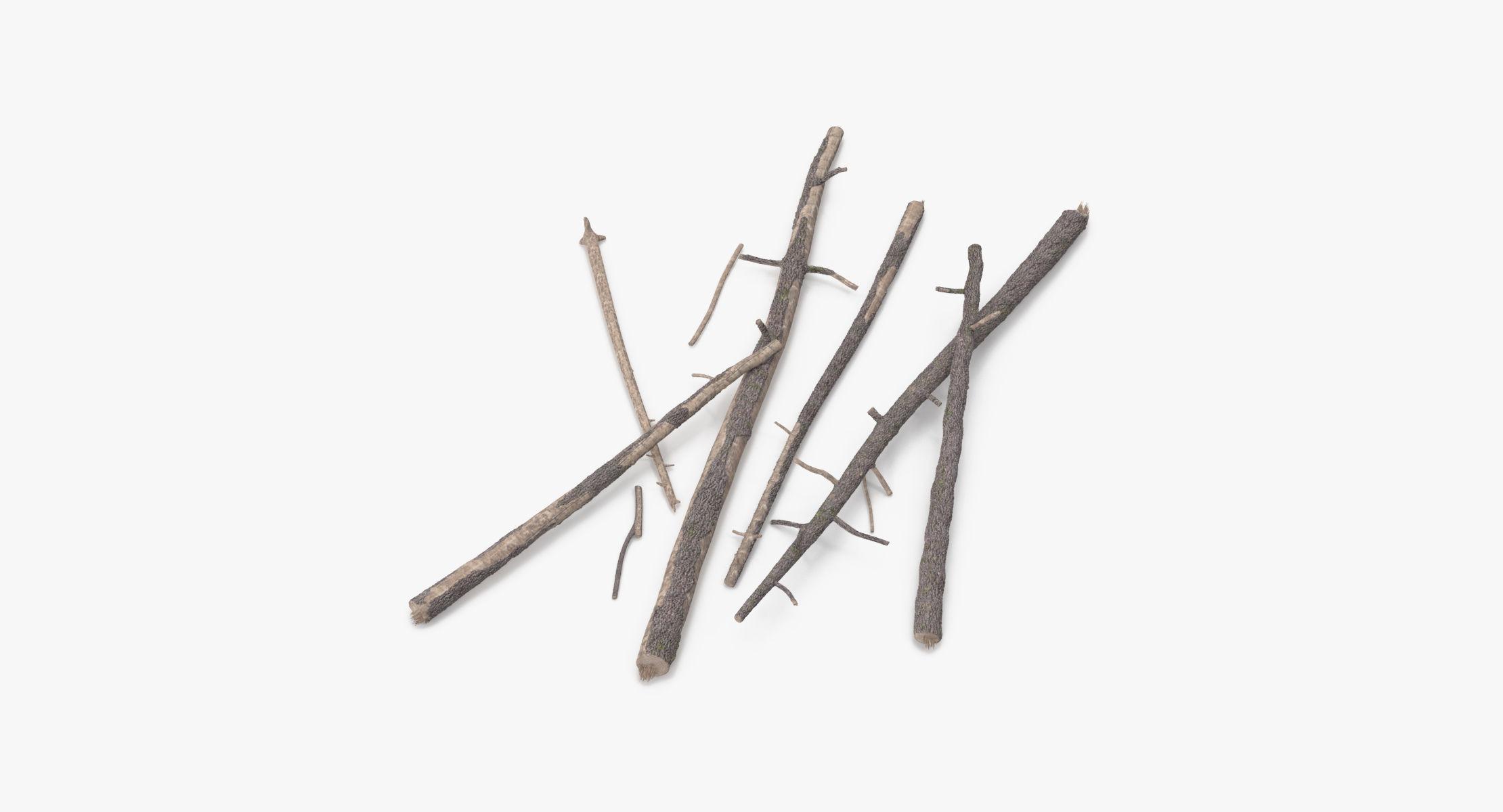 Fallen Log - Pine 02 - reel 1