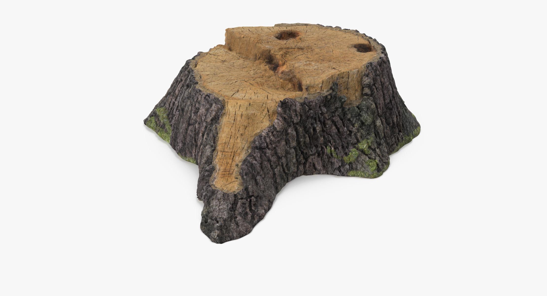 Tree Stump 01 - reel 1
