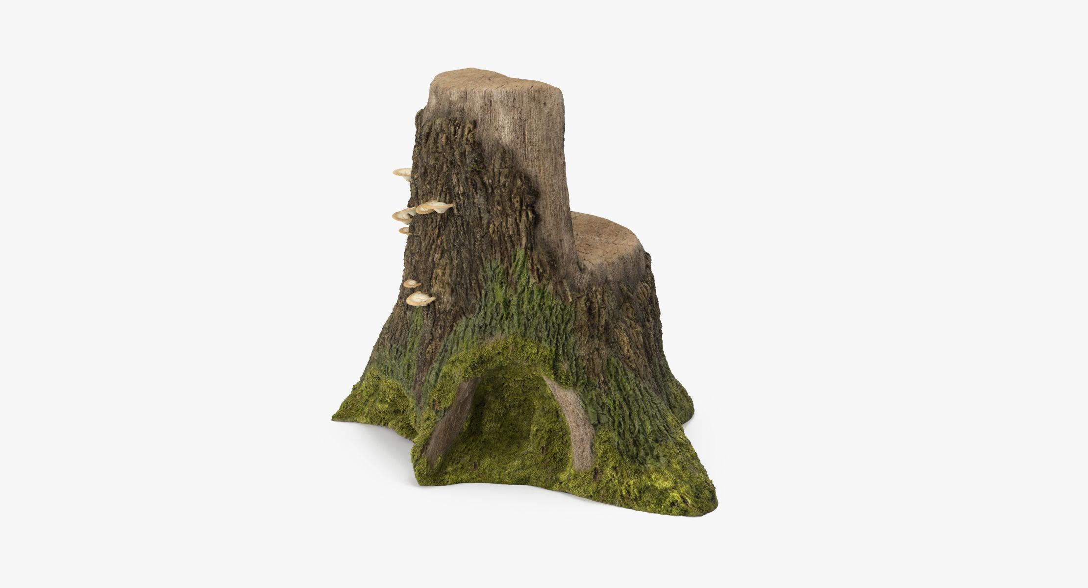 Tree Stump 04 - reel 1