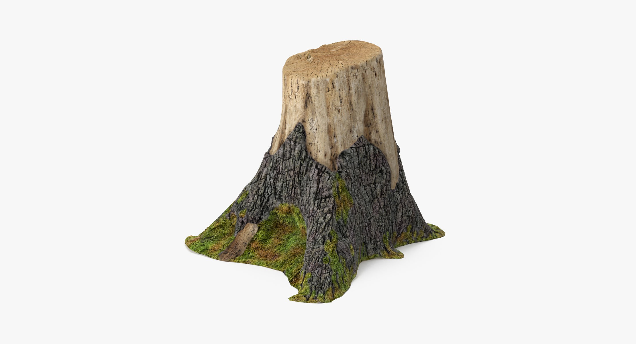 Tree Stump 02 - reel 1